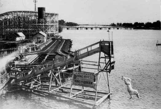 Diving Horse, CNE, 1921. We're hopefully securing a Diving Rhino for our 25th Anniversary Celebrations in 2017 on our Patio. Heads up!